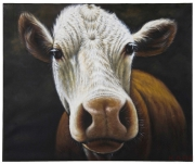 Oil Painting Cow 100x120